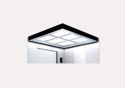 Car ceiling PD038